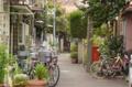 [東京][街角][路地]谷中 2012-04-17