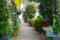 藍染大通り 2012-04-19