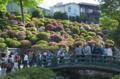 [東京][神社]根津神社 2012-05-05