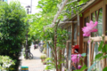 [東京][街角][路地]藍染大通り 2012-05-10