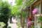 藍染大通り 2012-05-10