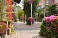 [東京][神社]藍染大通り 2012-05-12