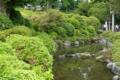 [東京][神社]根津神社 2012-05-16