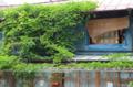 [東京][街角]根津 2012-05-17