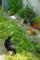 根津 2012-05-18