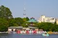 [東京]不忍池 2012-05-07