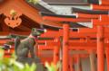 [東京][神社]根津神社 2012-04-16