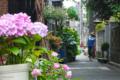 [東京][街角][路地]根津 2012-05-30