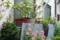 根津 2012-05-30