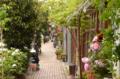 [東京][街角][路地]藍染大通り 2012-04-25