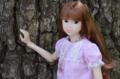 [doll][momoko DOLL]七菜ちゃん