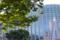 国立新美術館 2012-06-29
