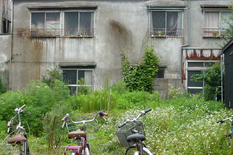 根津 2012-06-18
