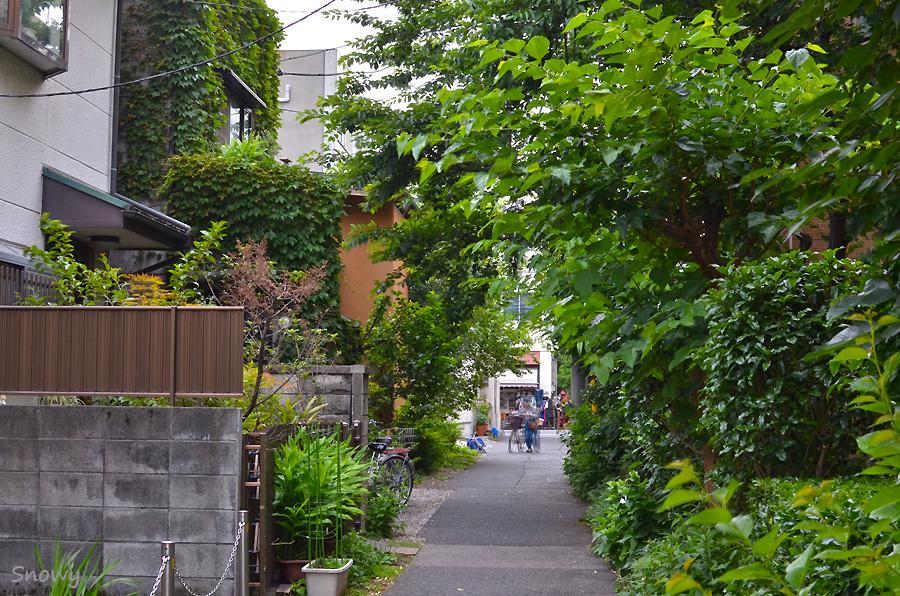 2012-06-15 上野桜木