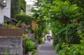 [東京][街角][路地]2012-06-15 上野桜木