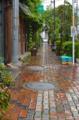 [東京][街角]雨の藍染大通り 2012-07-06