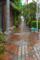雨の藍染大通り 2012-07-06