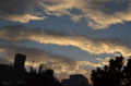 [空][雲][夕焼け]根津 2012-07-16