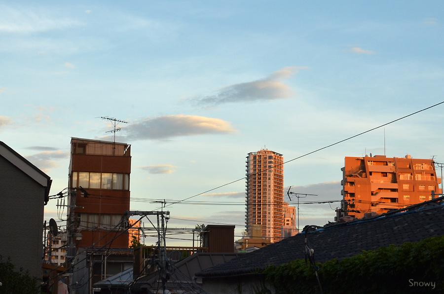 根津 2012-07-16