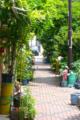 [東京][街角][路地]藍染大通り 2012-05-30