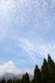 [空][雲]くじゅう花公園 2006-09-30