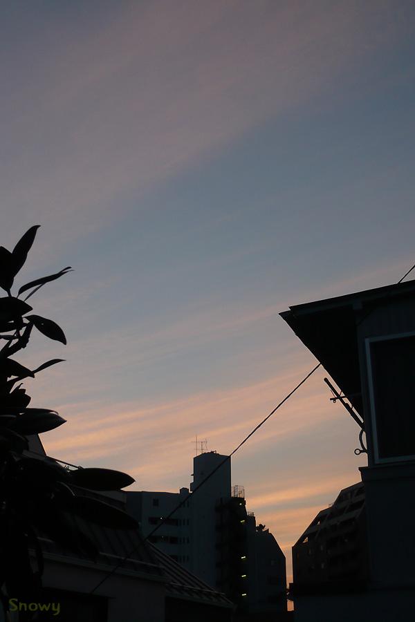 f:id:Snowowl:20120809211017j:image:w360
