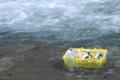 [熊本]緑仙峡 2006-07-29 17:02:30