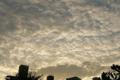 [空][雲][夕焼け]秋を感じた日の夕焼け 2012-08-16 18:05:19