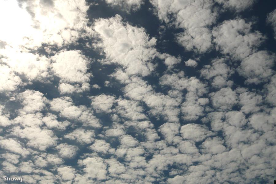 今年初めて秋が漂った空 2012-08-16 14:22:12