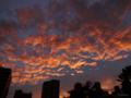 [空][雲][夕焼け]2012-09-19 17:44:10