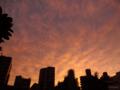 [空][雲][夕焼け]2012-09-27 17:36:05