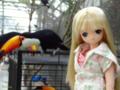 [えっくす☆きゅーと][doll]リアン@掛川花鳥園