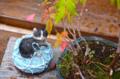 [東京][街角]根津ステンドグラス美術館 2012-10-18 13:00:02