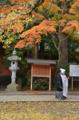 [神社]香取神宮 2012-11-24 13:37:55