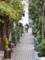 藍染大通り 2012-12-03 11:34:46