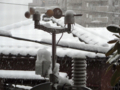 [東京][雪]2013-01-14 15:26:42