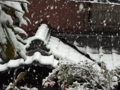 [東京][雪]2013-01-14 12:32:44