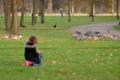 [ロンドン][野鳥]Kensington Gardens 2011-12-03 14:34:43