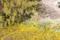 新宿御苑 2012-04-07 14:35:10