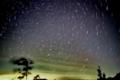 [空][星]1998-11 潮岬 Leonisの夜