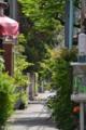 [東京][街角]根津 2013-04-25