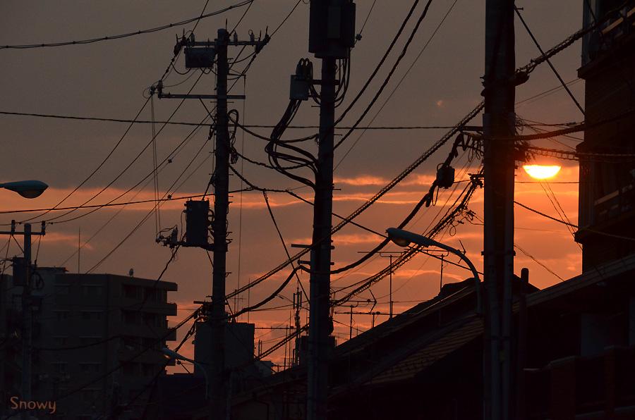谷中 2013-05-04