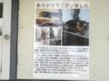 [街角]ガーネットちゃん 2013-05-09