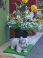 [街角]千駄木 2011-01-18 14:12:35