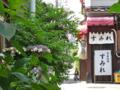 [街角]根津 2013-06-04