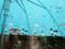 ミクの傘 2013-06-21