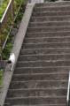 [東京][階段][猫]藪下通りの階段を下る猫 2013-07-28