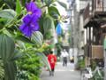 [街角]根津 2013-08-22