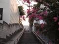 [東京][階段]千駄木 2013-09-28