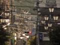 [東京][街角]根津 2013-11-06